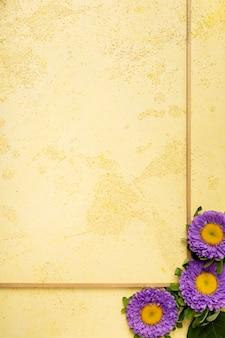 Primer plano marco minimalista con margaritas violetas frescas