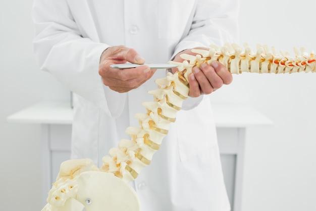 Primer plano de un médico con el modelo de esqueleto