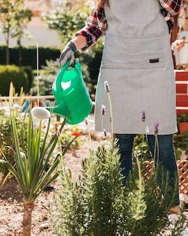 Primer plano de mujer jardinero regando las plantas con regadera verde