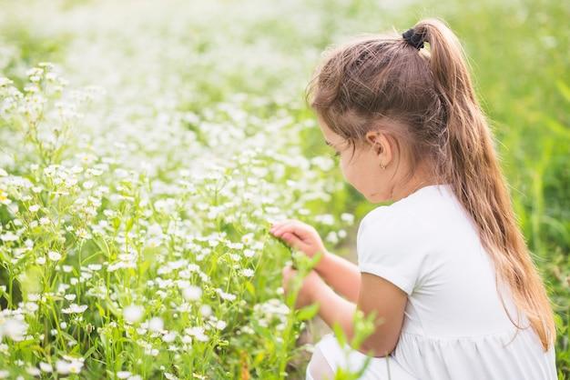 Primer plano de una niña mirando flores blancas salvajes