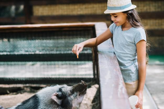 Primer plano de una niña sonriente alimentar galletas para cerdo en la granja
