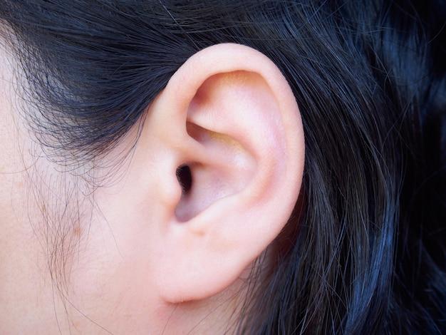 Primer plano del oído humano