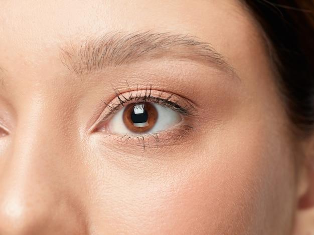 Primer plano de ojos grandes femeninos bien cuidados y mejillas en estudio blanco