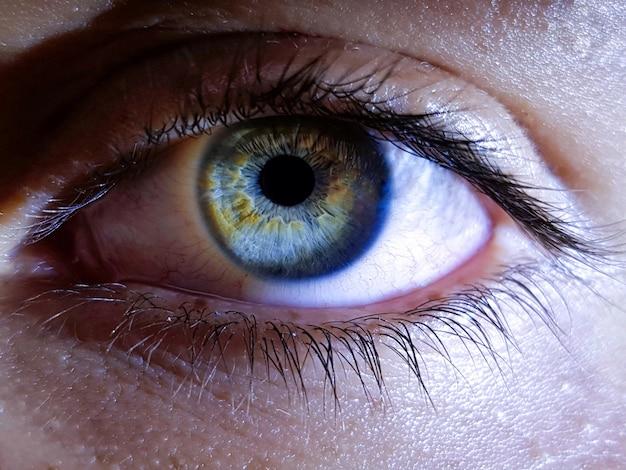 Primer plano de los ojos profundos de un humano femenino