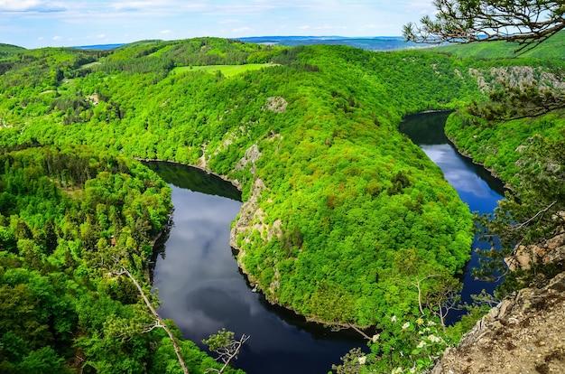 Primer plano del paisaje protegido de cesky kras en chequia