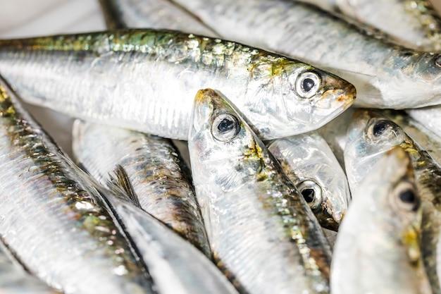 Primer plano de la pila de pescado fresco en hielo