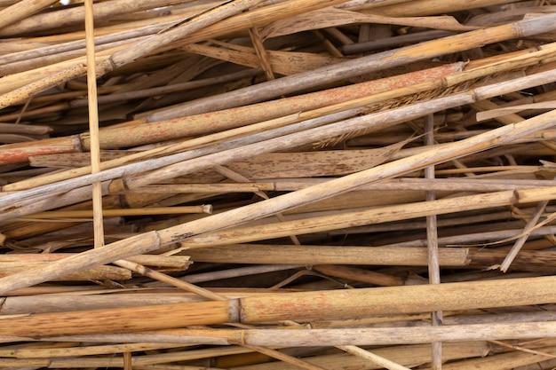 Primer plano de una pila de tallos de caña seca