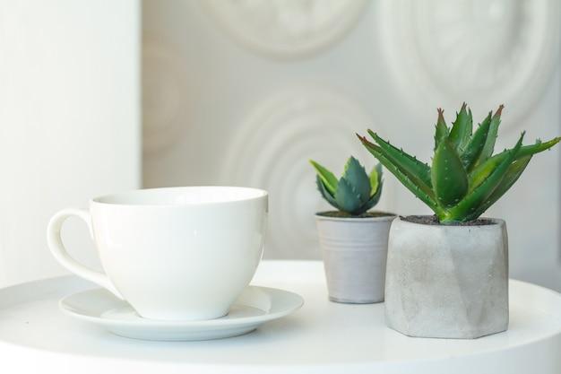 Primer plano de una taza blanca y dos macetas de hormigón con suculentas sobre un fondo borroso de una pared decorativa, enfoque selectivo