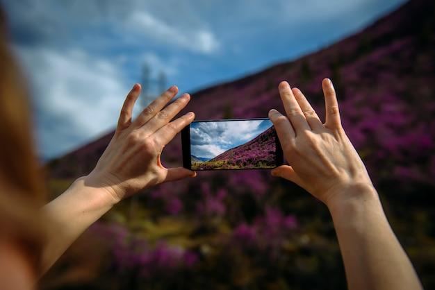 Primer plano de teléfono inteligente en las manos. una mujer desconocida que usa un dispositivo toma fotos de la ladera de una montaña cubierta de flores rosadas.