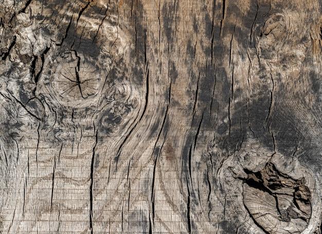 Primer plano de textura de madera vieja