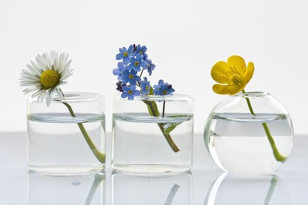 Primer plano de tres jarrones de cristal con diferentes flores silvestres en un blanco