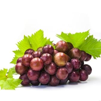 Primer plano de uvas jugosas frescas sobre fondo blanco