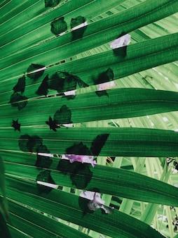 Primer plano vertical de hojas de helecho con sombras de flores sobre ellos bajo la luz del sol