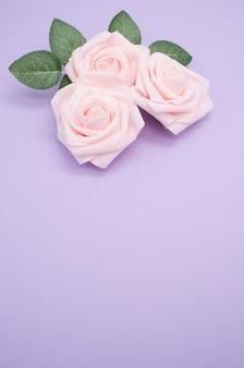 Primer plano vertical de rosas rosadas aislado sobre un fondo púrpura con espacio de copia