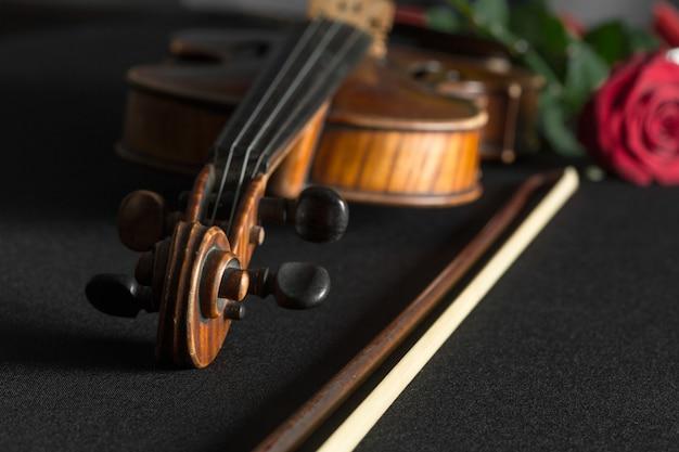Primer plano de violín y rosa