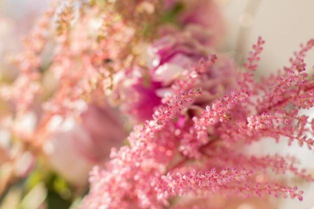 El primer rosado astilbe y el clavel florece en el día brillante con borroso.