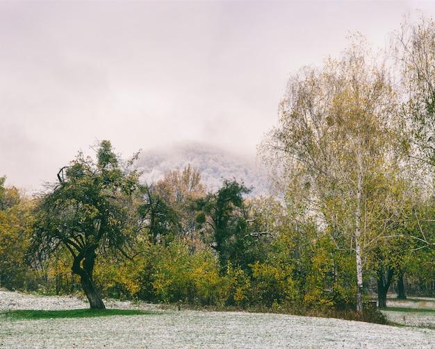 La primera nevada cayó en el parque de otoño temprano en la mañana