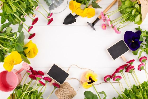 La primera primavera coloridas flores listas para plantar. marco de jardinería., vista superior