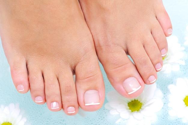 Procedimiento de tratamiento de spa en el agua de los pies femeninos de belleza