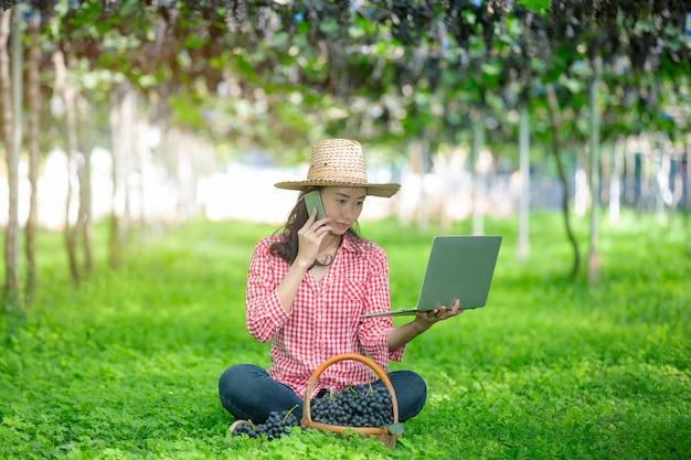 Los productores de uva están felices de vender las uvas del mercado en línea