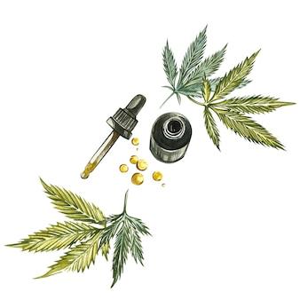 Productos de cáñamo de aceite de cbd. ilustración de acuarela en blanco bueno para cosméticos, medicina, tratamiento, aromaterapia, enfermería, diseño de paquete. conjunto de dibujo de elementos florales, acuarela botánica