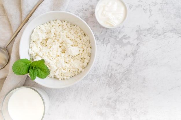 Productos lácteos y hojas de menta espacio de copia