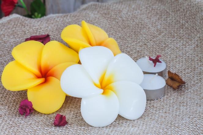 Productos naturales de tratamiento de belleza de spa