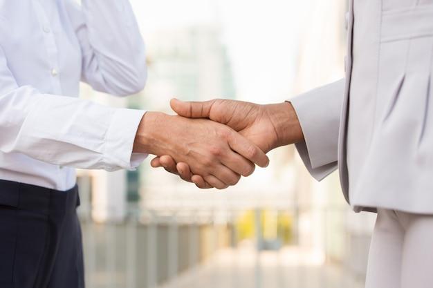 Profesionales de negocios dándose la mano