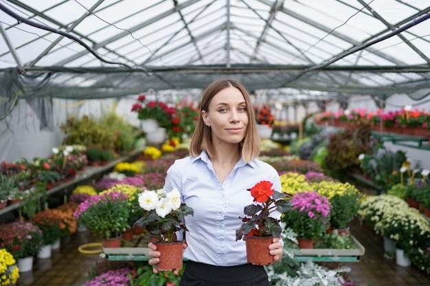 Propietario de negocio sonriente en su vivero de pie sosteniendo en las manos dos macetas con flores rojas y blancas en el invernadero