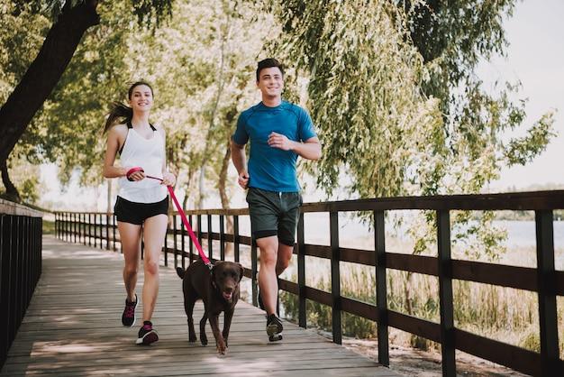 Los propietarios con mascotas se encuentra en el puente en el parque. soleado de verano.