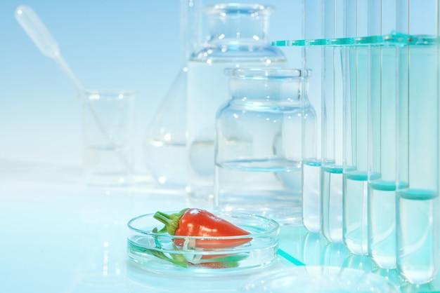 Prueba de pimientos rojos para contaminación química