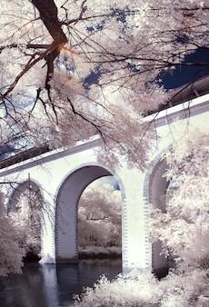 Puente blanco sobre el río