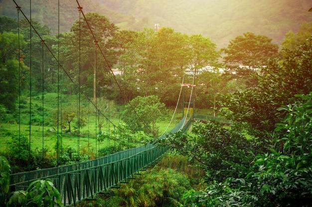 Puente colgante en medio de la naturaleza en costa rica
