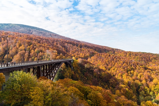 Puente jogakura ohashi otoño japón
