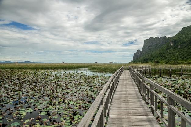 Puente de madera de bung bua, el sendero natural en el lago de loto con un paisaje de montaña de piedra caliza en el parque nacional khao sam roi yod, provincia de prachuap khiri khan, tailandia.