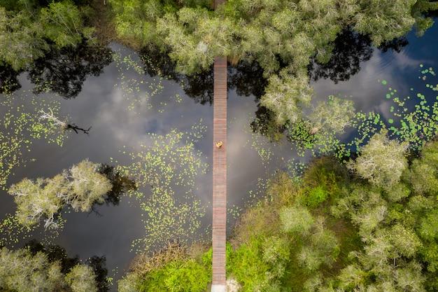 Puente de madera para personas que cruzan el río en el parque verde