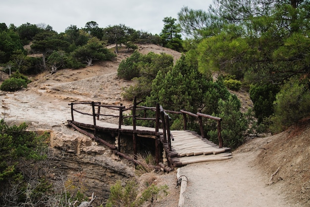 Puente de madera para practicar senderismo en una zona montañosa protegida