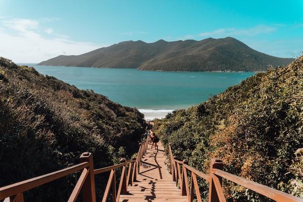 Puente de madera rodeado por el mar y colinas cubiertas de vegetación bajo un cielo azul en brasil