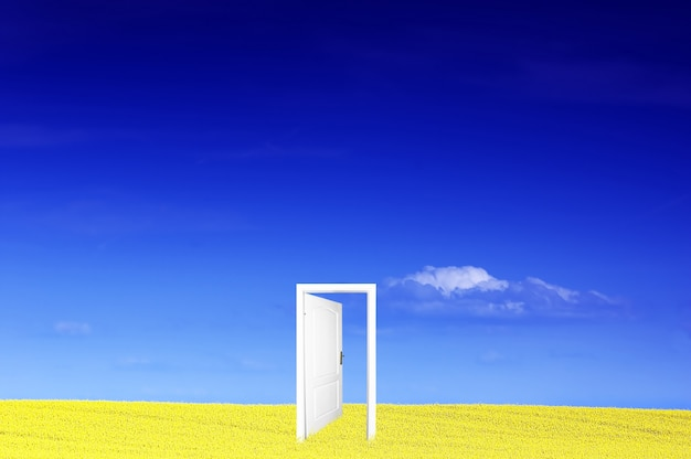 Puerta en un campo amarillo