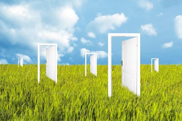 Puertas blancas en el prado