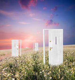 Puertas en un campo
