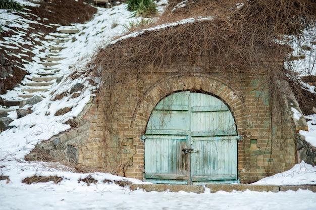 Puertas dobles cubiertas de hiedra. puerta de la puerta de jardín azul de la vendimia en una fila de cobertura verde.