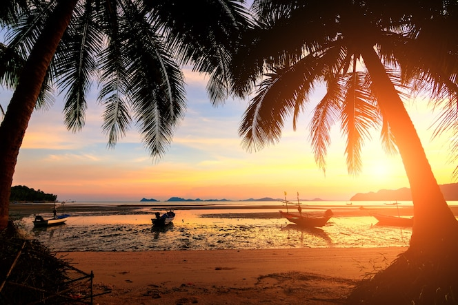 Puesta de sol sobre la playa tropical con palmeras de coco y barco en koh tao