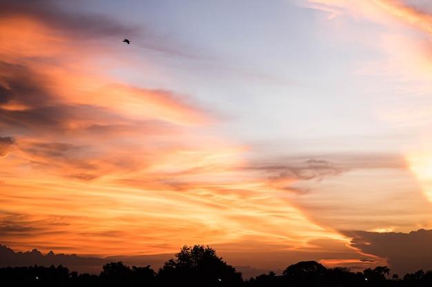 Puesta de sol cielo luz dorada y nube colorida