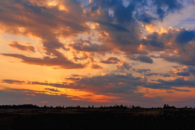 Puesta de sol naranja dorado en la noche de otoño en cielo nublado sobre campo y bosque