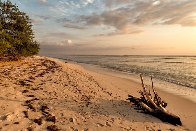 Puesta de sol en la playa indonesia