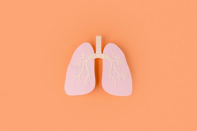 Pulmones hechos de papel aislados en naranja