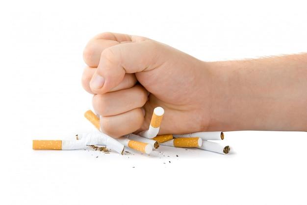 Puño masculino con muchos cigarrillos aislados en blanco