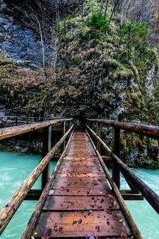 Punto de vista filmado en un puente colgante sobre un río en un bosque