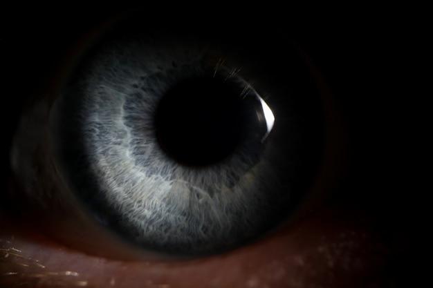 La pupila de una persona se asoma del fondo oscuro